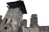 Уникальный замок Закарпатья спасут от разрушения