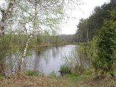 В Яворівському парку побудують екологічний центр і створять веломаршрут