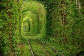 За в'їзд до Тунелю кохання доведеться заплатити