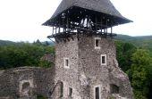 Невицкому замку вернули статус памятника архитектуры