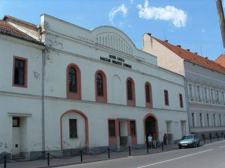 Закарпатский областной венгерский драматический театр