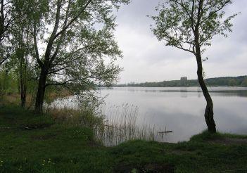 Озеро Редькіне (Міністерка), Київ
