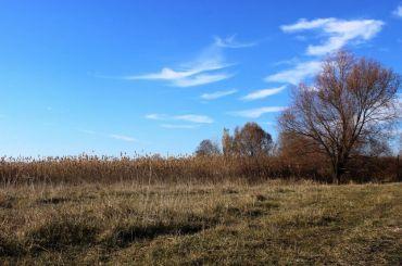 Nyzhnosulskyy National Park