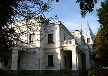 Palace Tereshchenko, Andrushevka