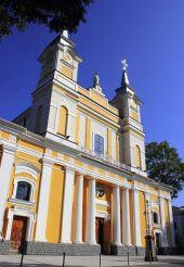 Кафедральный костел Святой Софии, Житомир