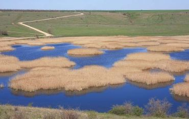 """Regional Landscape Park """"Tylyguls`kiy"""""""
