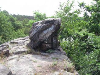 Каменная жаба