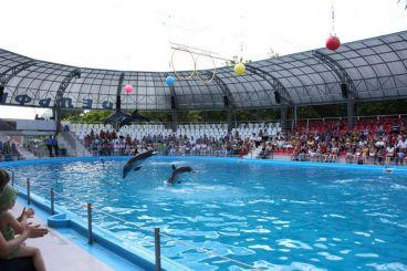 Дельфинарий «Немо», Одесса